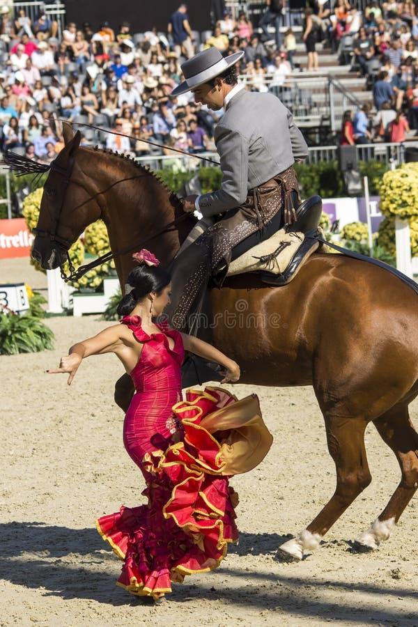 CSIO BARCELONA 2014 - FLAMENCO EQUESTRIAN wystawa fotografia royalty free