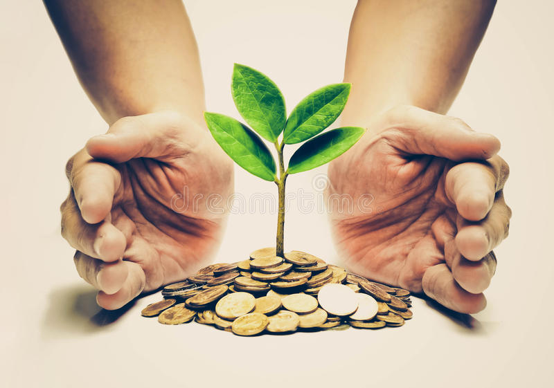 Csr green business royalty free stock images