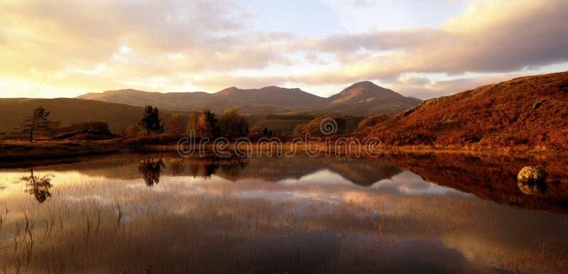 Cu van het het districts nationaal park van het meer royalty-vrije stock afbeeldingen