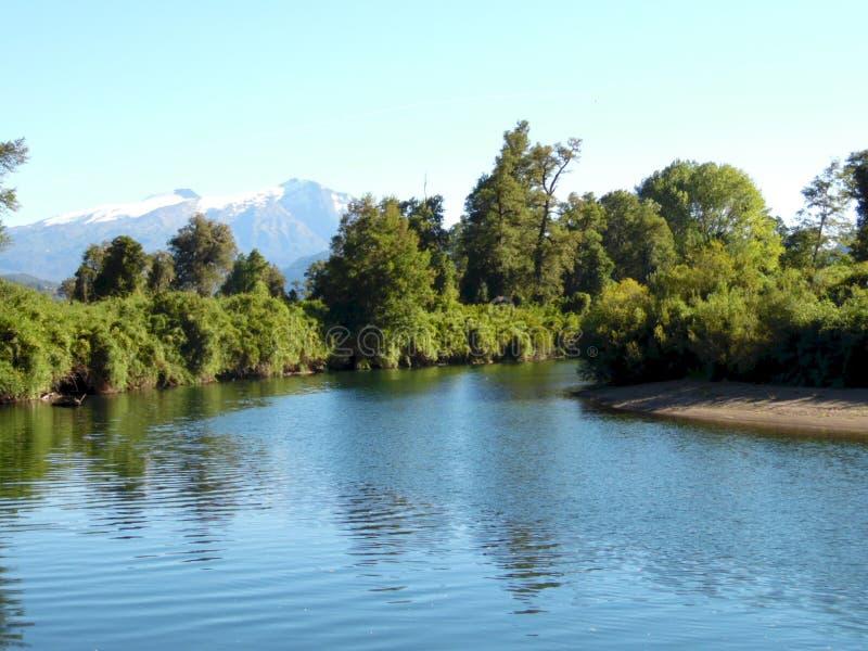 Cua Cua flod i söderna av Chile arkivbild