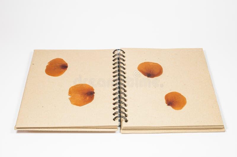 Cuaderno del vintage imagen de archivo