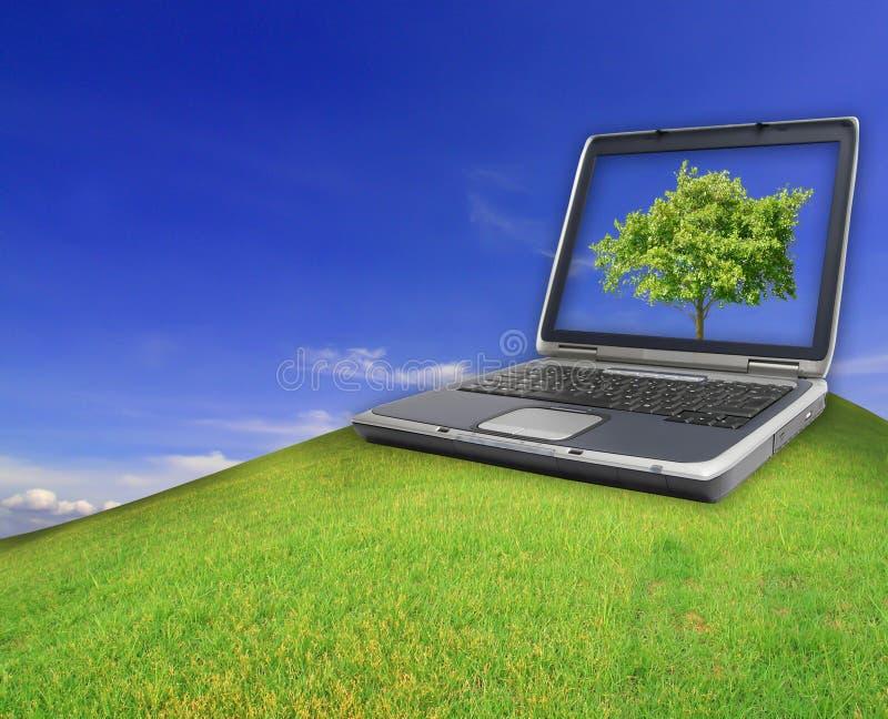 Cuaderno en el campo verde de la hierba del resorte foto de archivo libre de regalías