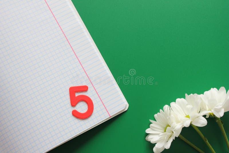 Cuaderno limpio en la caja y marcar cinco en ella Tres crisantemos blancos en un fondo verde De nuevo a escuela fotografía de archivo