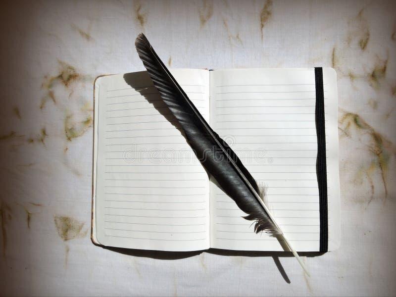 Download Cuaderno y pluma imagen de archivo. Imagen de fauna, textura - 44853515