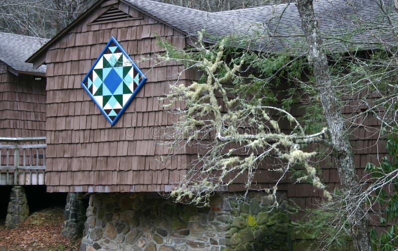 Cuadrado del edredón y rama cubierta de musgo foto de archivo