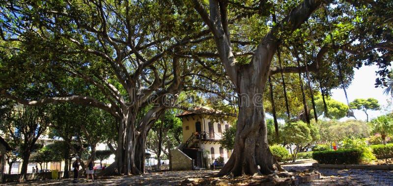 Cuadrado sombrío en el jardín principal en Trapan, Sicilia, Italia foto de archivo
