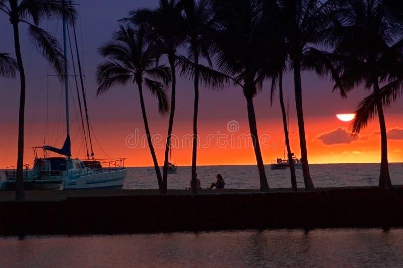 Cuadro tropical de la puesta del sol fotografía de archivo libre de regalías