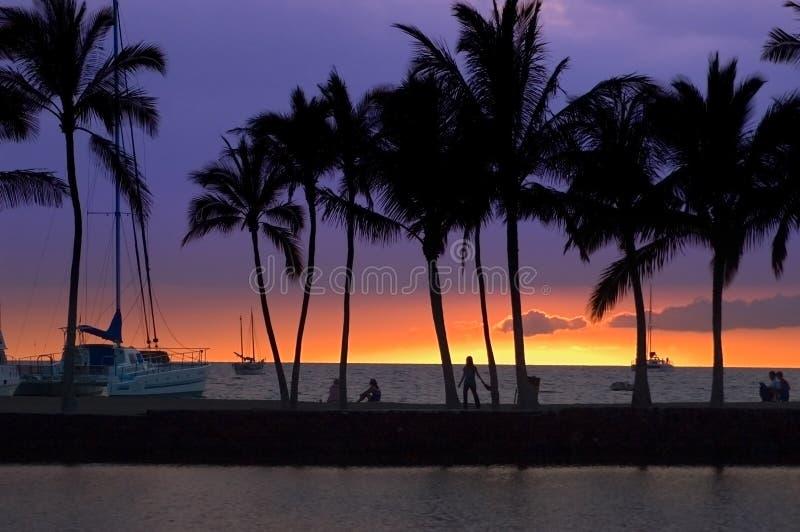 Cuadro tropical de la puesta del sol imagenes de archivo