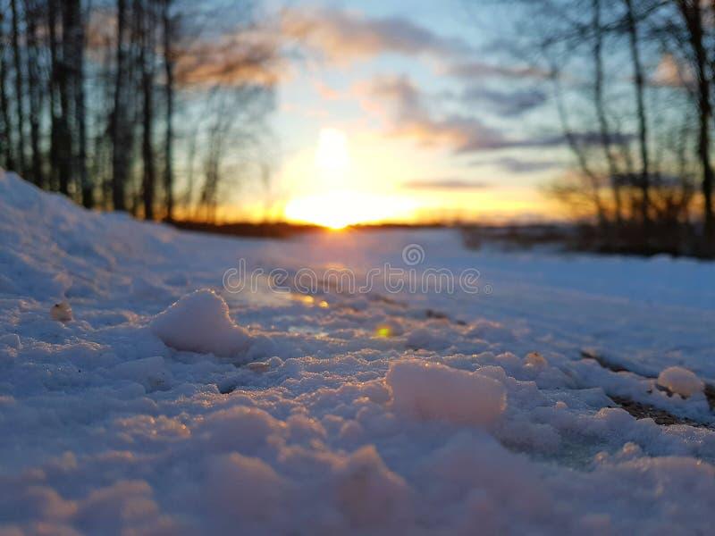 Cuando la belleza derrite la nieve foto de archivo