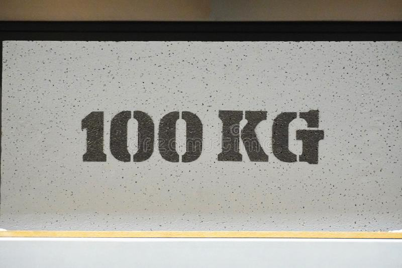 cuando se sometan a ensayo una estantería o una estantería de 100 kilogramos limitación de la carga en la estructura libre illustration