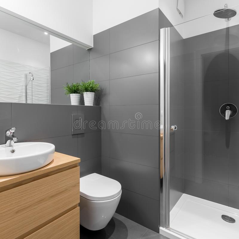Cuarto de baño elegante en tejas grises imágenes de archivo libres de regalías