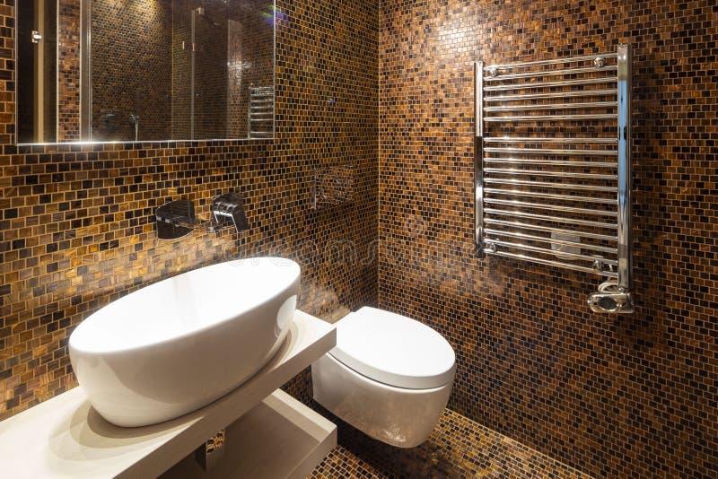 Cuarto de baño moderno del apartamento con finales finos fotografía de archivo libre de regalías