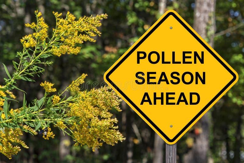 Cuation - pollensäsong framåt arkivfoto