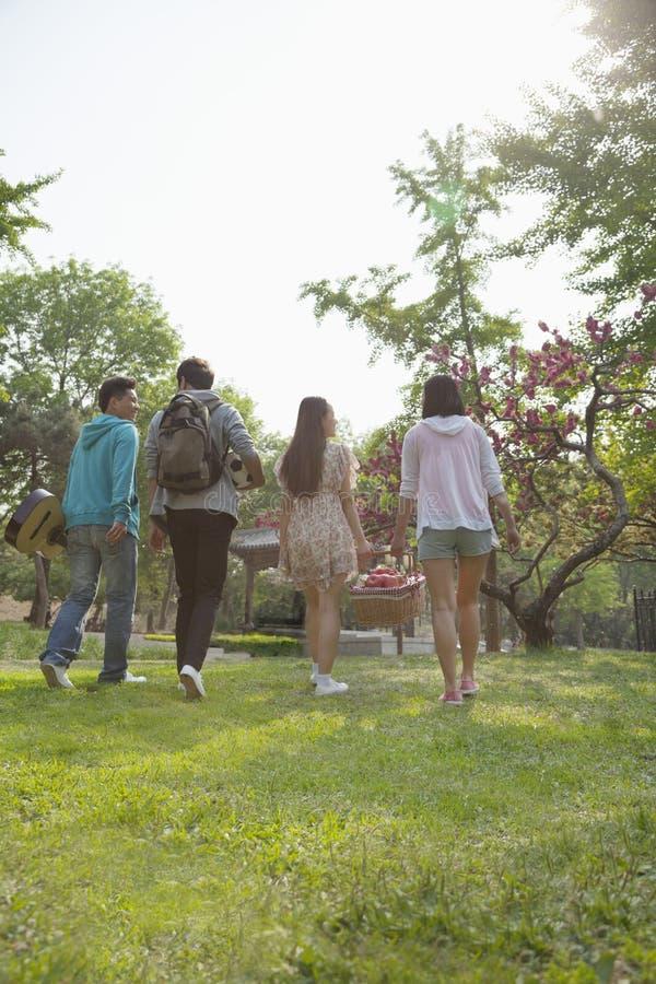 Cuatro amigos que caminan en un parque para tener una comida campestre en un día de primavera, llevando una cesta de la comida cam fotografía de archivo