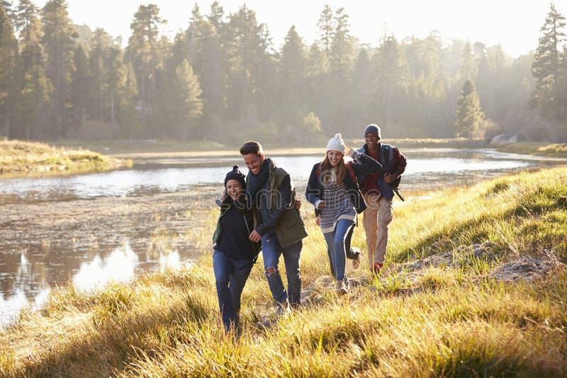 Cuatro amigos que se divierten que camina al lado de un lago imagen de archivo