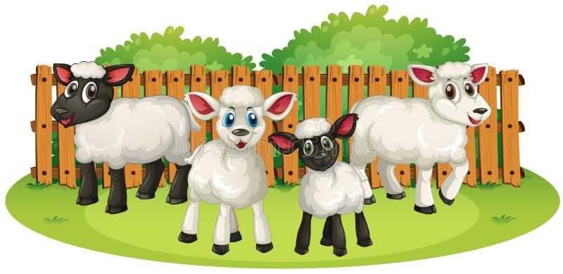 Cuatro corderos en la granja libre illustration