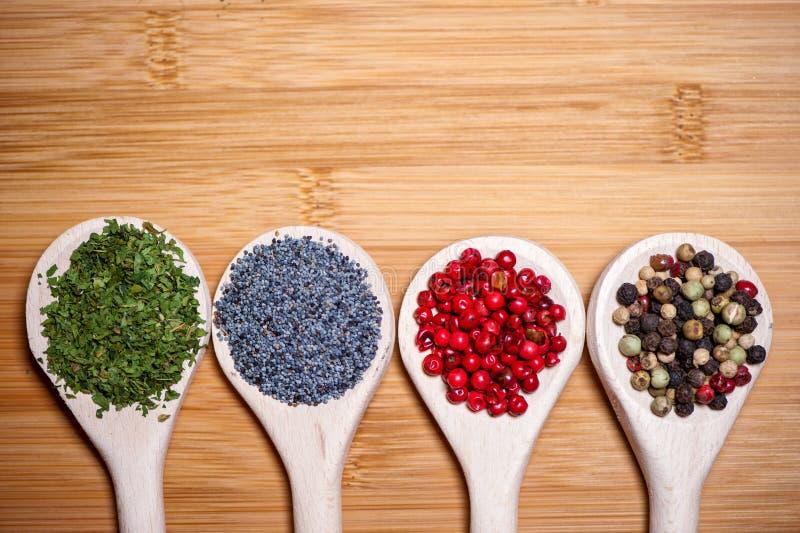 Cuatro diferentes tipos de especias calientes en una mezcla de ingredientes imagen de archivo