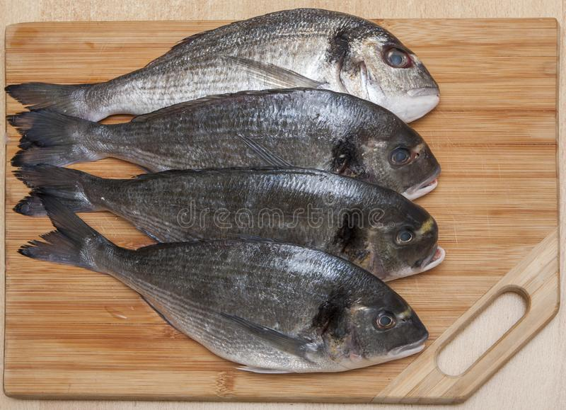 Cuatro pescados frescos de Dorada fotos de archivo libres de regalías