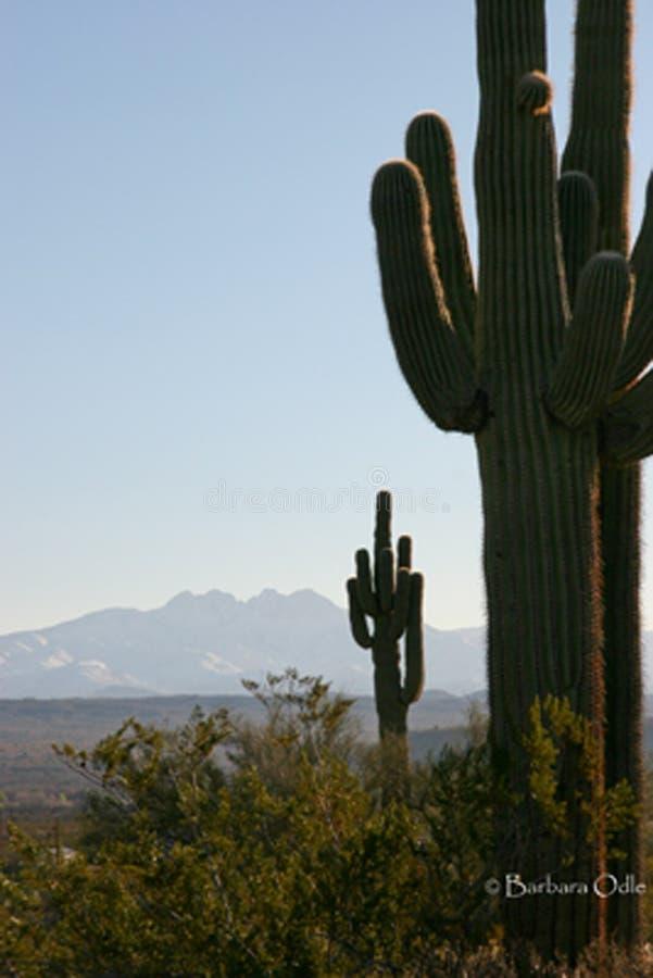 Cuatro picos Az imagen de archivo