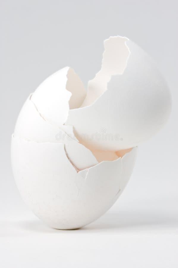 Cuatro pilas de la cáscara de huevo fotos de archivo