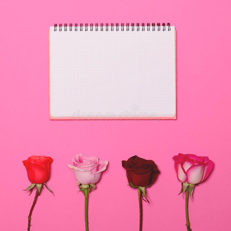 Cuatro rosas en fondo rosado en colores pastel con la página en blanco del cuaderno sobre - concepto puesto plano mínimo de moda fotografía de archivo