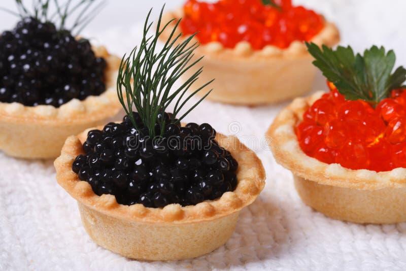 Cuatro tartlets con el caviar rojo y negro de los pescados imagen de archivo
