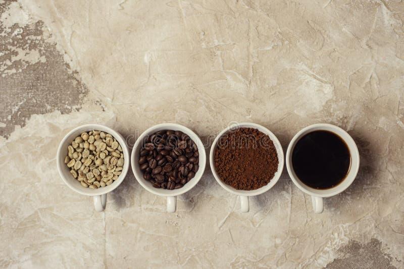 Cuatro tipos de café sin tostar, haba, tierra y una en taza foto de archivo