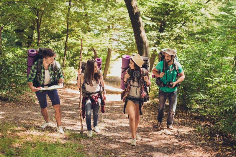 Cuatro turistas emocionados están caminando en bosque, hablar y el goce del otoño, llevando los equipos cómodos para caminar, las fotos de archivo
