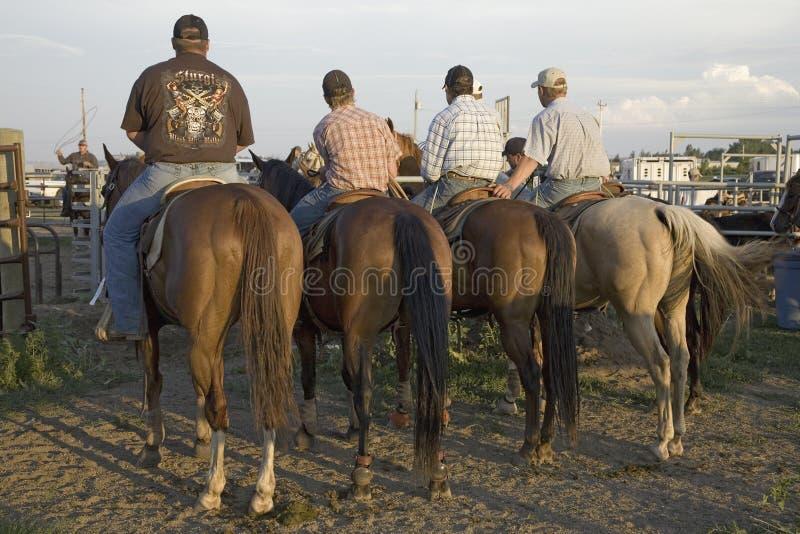 Cuatro vaqueros en el rodeo de PRCA imagen de archivo libre de regalías