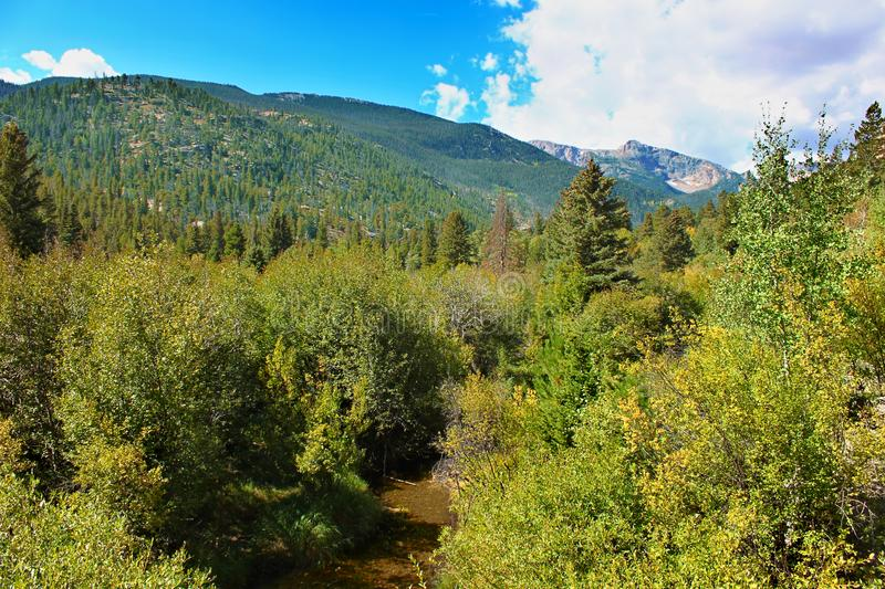 Big Thompson River Valley Rocky Mountains royalty free stock photography