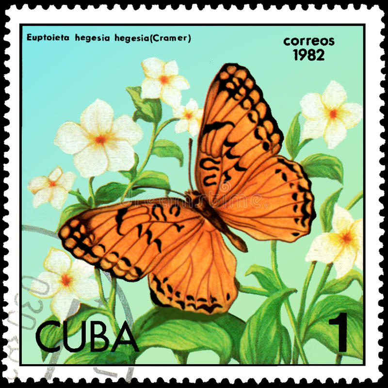 CUBA - CIRCA 1982: Postage stamp printed by Cuba shows butterfly Euptoieta hegesia stock illustration