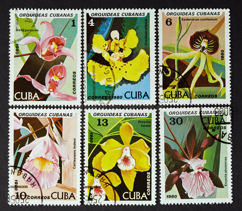 CUBA - CIRCA 1980: a series of stamps printed in CUBA, shows orchids, CIRCA 1980 stock images