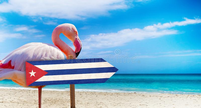 Cuba flag on wooden table sign on beach background with pink flamingo. There is beach and clear water of sea and blue sky in the. Background. It is tropical stock images