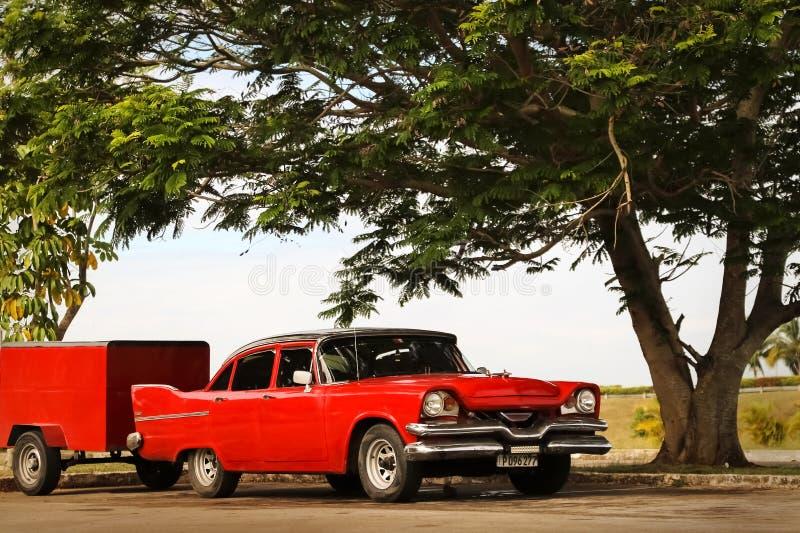 Cuba, Havana - Januari 16, 2019: Oude Amerikaanse rode auto in de oude stad van Havana tegen de tropische boom royalty-vrije stock foto's