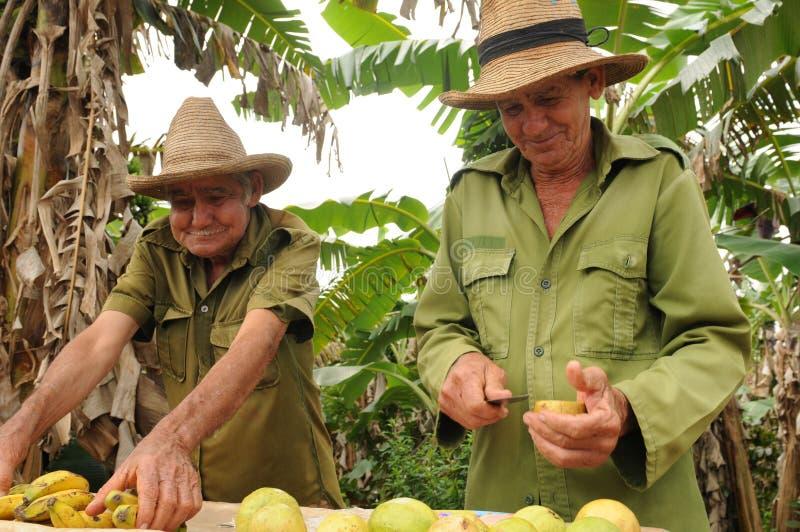 Cuba: Twee oudere Cubaanse landbouwers verkopen vruchten aan de toeristen royalty-vrije stock afbeeldingen