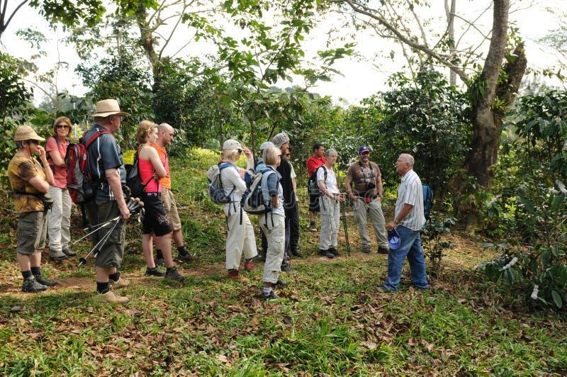 Cuba: Uma excursão da plantação de café com grupo europeu do turista imagens de stock