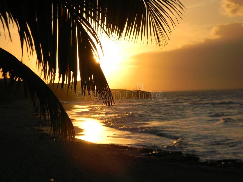 Cuba - Varadero foto de stock royalty free