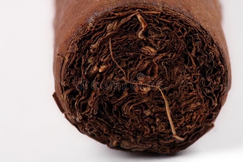 Download Cuban Cigar stock image. Image of bunch, brown, stack - 23726239