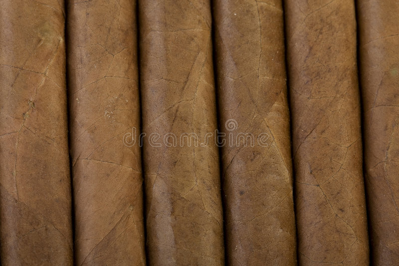Cuban Cigars royalty free stock photography