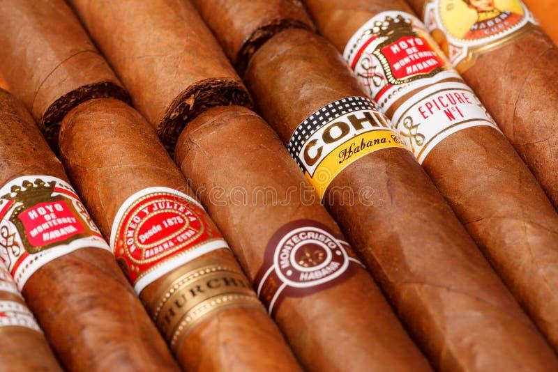 Cuban cigars royalty free stock photo