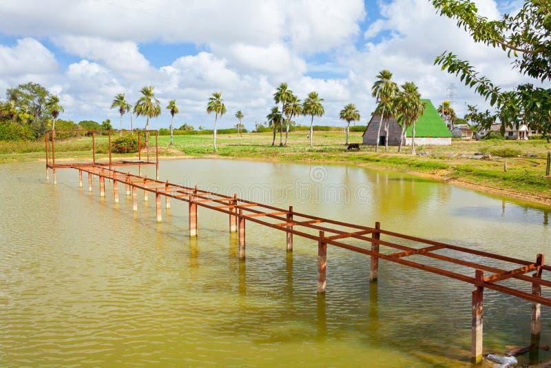 Cuban countryside in Pinar del Rio royalty free stock photos