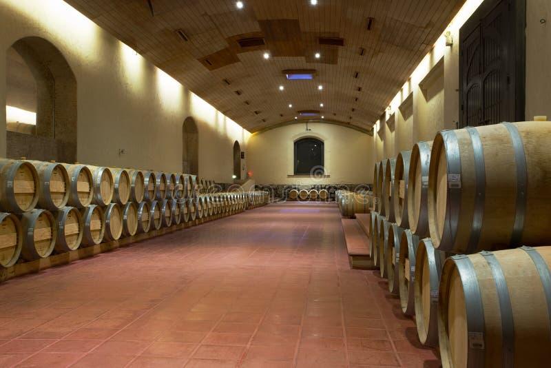 Cubas do vinho do carvalho, vale de Maipo, o Chile fotos de stock