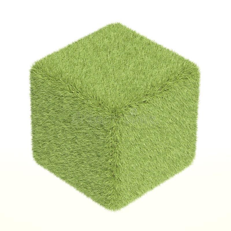 Cube en herbe verte illustration libre de droits