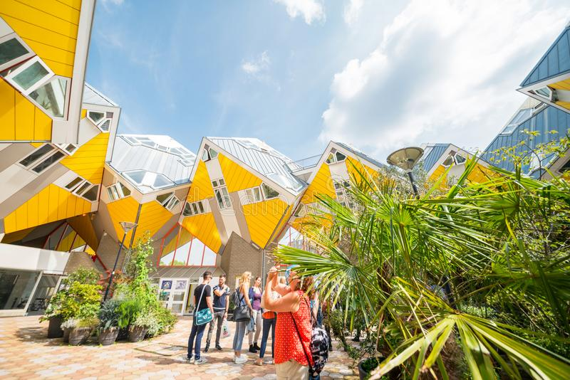 Cube houses of Rotterdam bright yellow and tilting stock photos