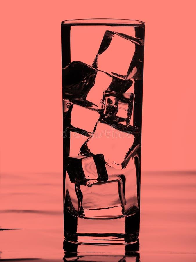 cube l'eau de glace en verre Corail modifié la tonalité image stock