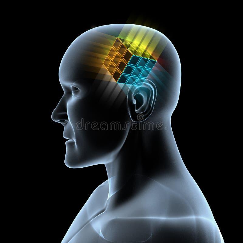 Cube magique dans le cerveau illustration libre de droits