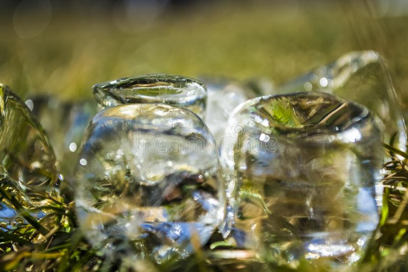 Cubes of large ice lie on a green summer grass. Play of color and patches of light. Background or texture. Cubes of large ice lie on a green summer grass. Play stock photo