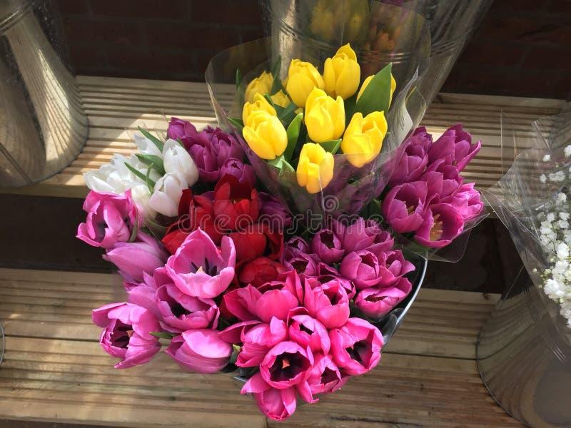 Cubeta de ramalhetes da tulipa fotografia de stock royalty free