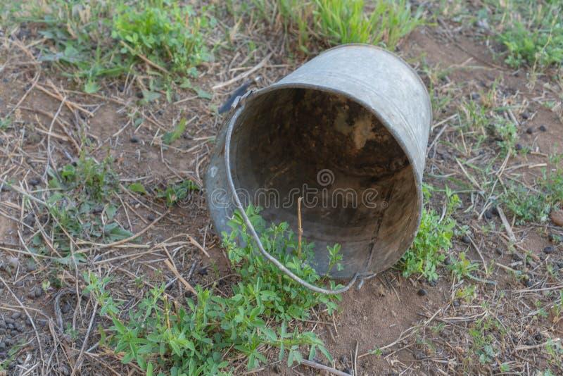 Cubeta oxidada velha do ferro na grama do jardim O conceito da crise financeira e da pobreza fotos de stock