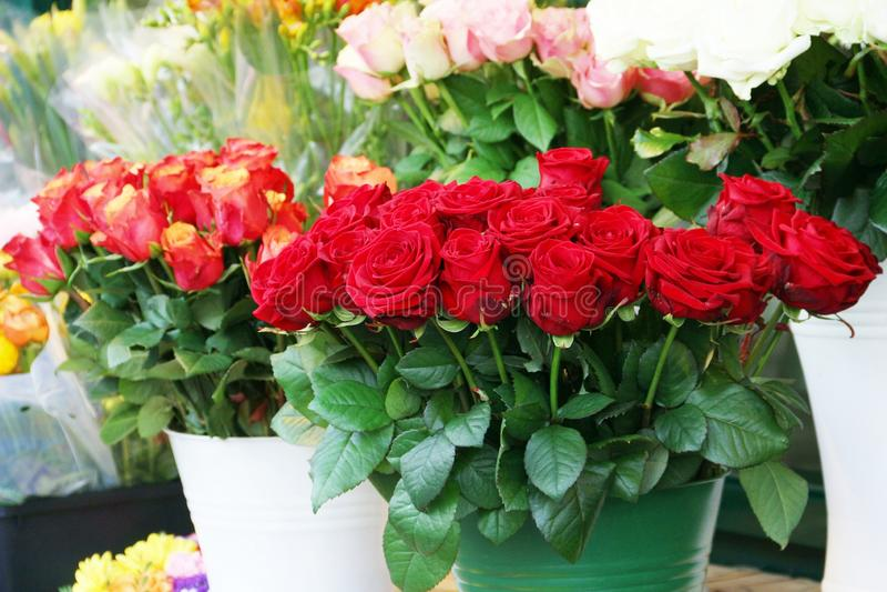 Cubetas das rosas no florista fotos de stock